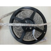 5M Common Anode Flashing Color Horse Race 5050 RGB LED Strip